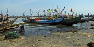 Artisanal fishing vessels in Tema, Ghana. (credit: Carol McCarthy/CRC)
