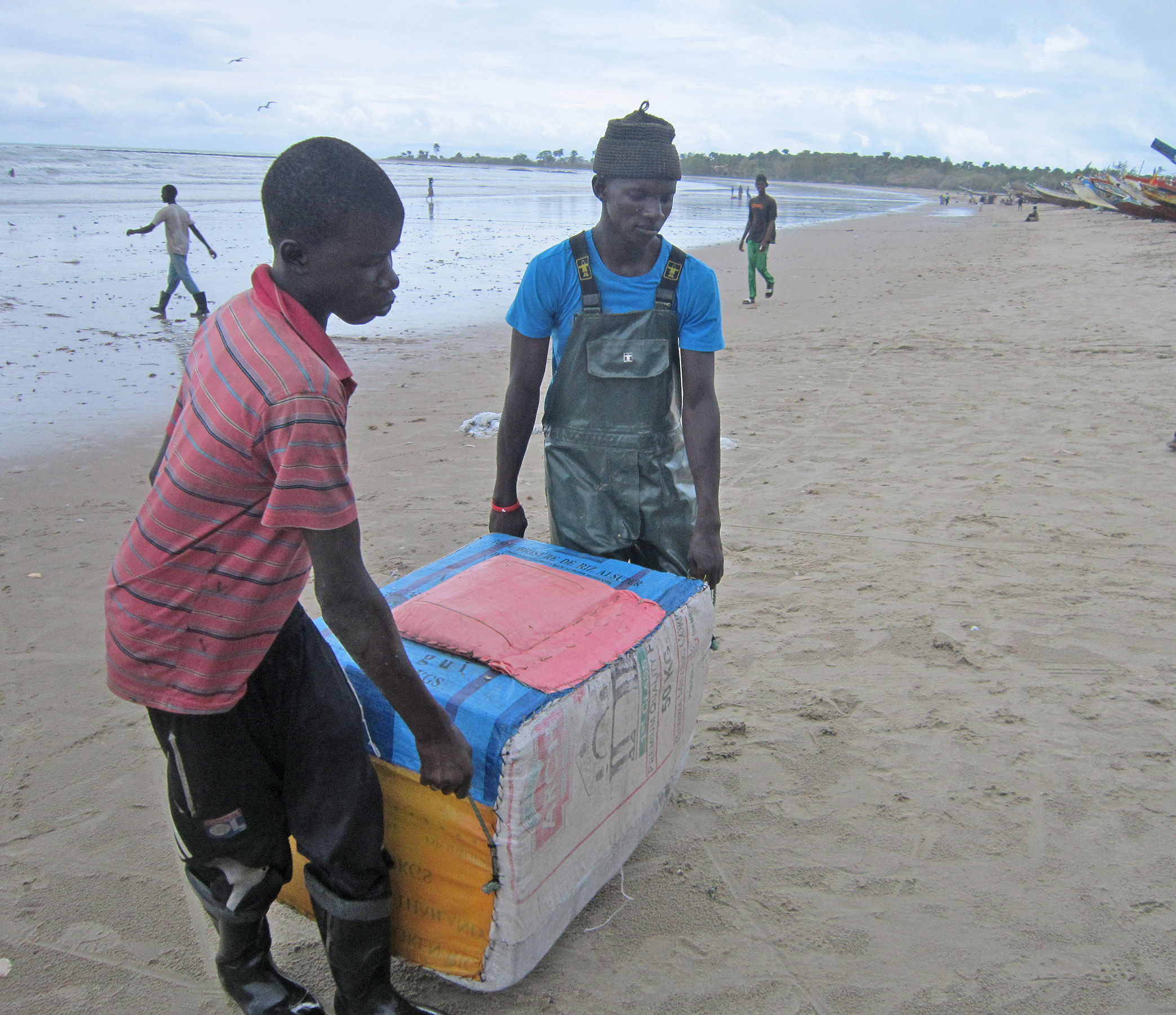 Gambian sole fishermen landing with iced sole
