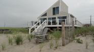 beachsamp_duneplanting
