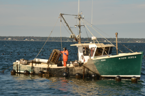 Salt Water Farms employees tend cages of shellfish at their aquaculture operation off Aquidneck Island. (credit: RI Sea Grant)