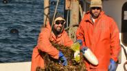 fisheries_americanmusselharvesterFeature