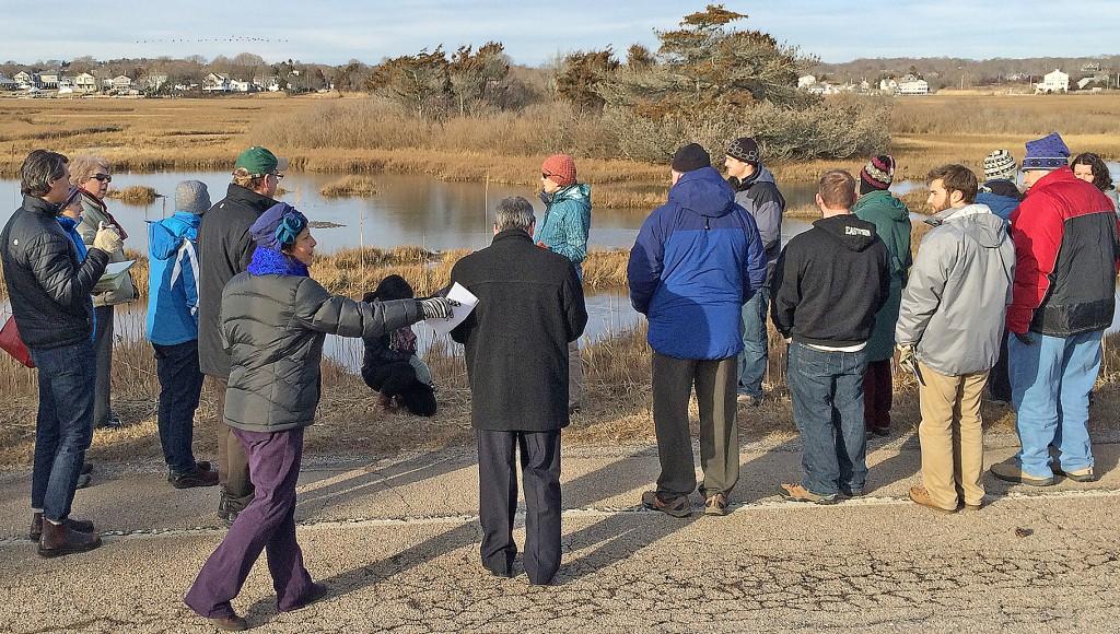 wetlandswalk2